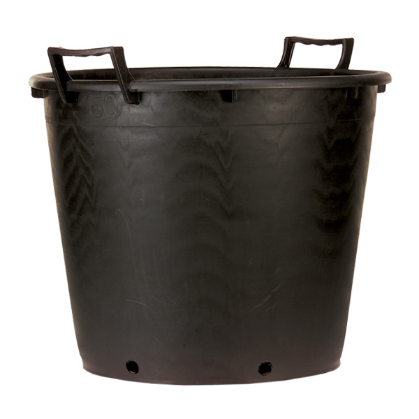 Handle container