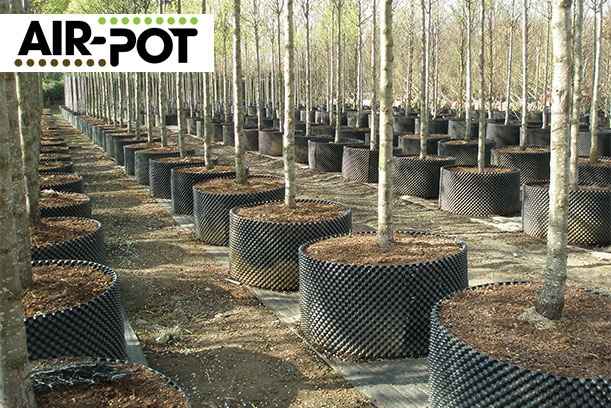 Superoots-Air-Pot-Ng-Niccolai-exclusive distributor for Italy