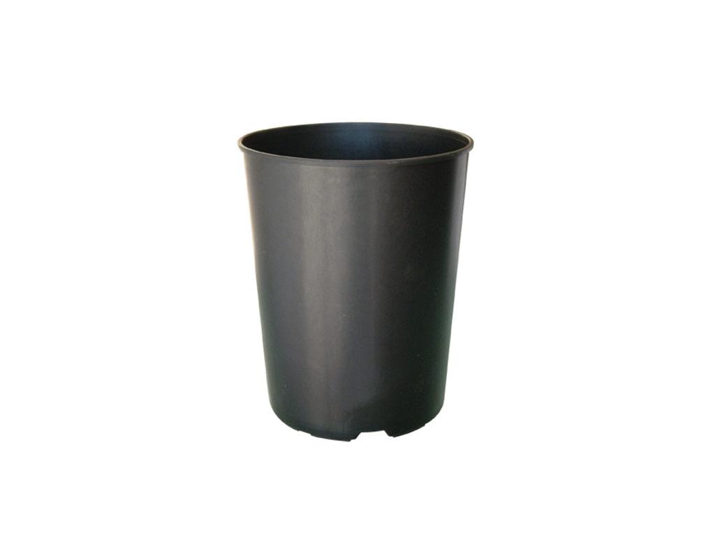 vaso-lungo